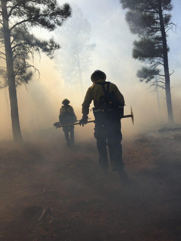 wild land fire fighters walk through smoke on prescribed burn
